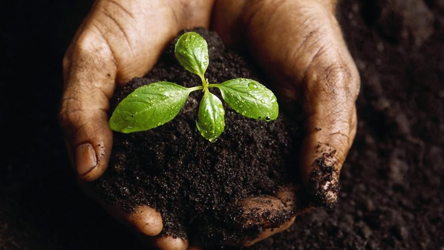Día mundial del suelo ...con Conterol
